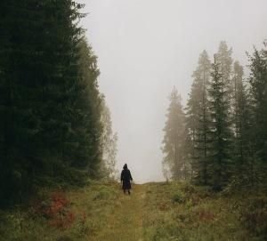 Such a long journey… Anna-aden-fog-forest-girl-magic-favim-com-244732