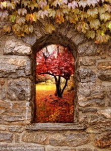 Tear down the walls… Landscape-tumblr-secretdreamlife-color-autumn-favim-com-541623