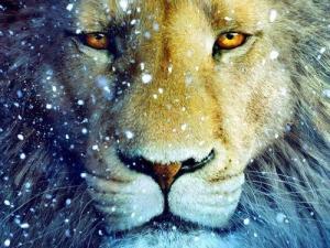 Lets us be kings… Animal-aslan-landscape-lion-narnia-favim-com-357619
