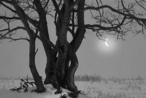 Twisted Times… Bampw-black-amp-white-black-and-white-cute-landscape-favim-com-357692