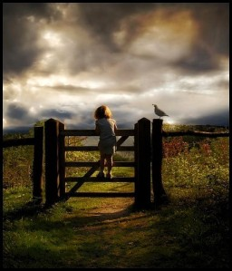 The waiting is over… Bird-child-photography-waiting-favim-com-167349