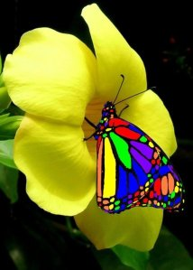 Feel the truth…. Hot-amazing-beautiful-favim-com-530644