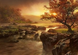 nature-river-un-tree-Favim.com-508773