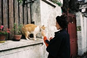 An act of Kindness…. Animal-brunette-cat-girl-kitty-favim-com-326110