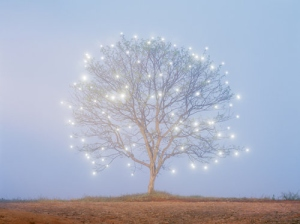 Never Feel Alone… Adorable-beauty-blue-christmas-color-colorful-favim-com-57839