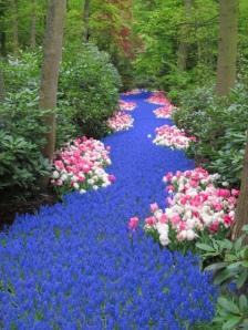 Walking A Path… Flowers-river-favim-com-586204