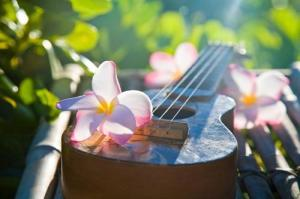 hawaii-hawaiian-music-paradise-Favim.com-693384