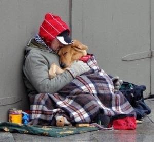 bauty-dog-friends-forever-guy-Favim.com-723941