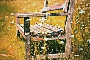 Have we forgotten to be still? Chear-countryside-cute-daisy-favim-com-745520