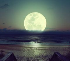 fullmoon-moon-nature-night-Favim.com-718117