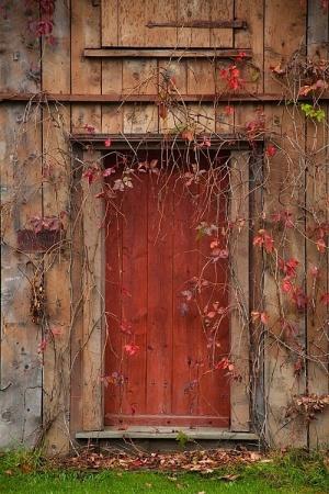 Just Walk Through The Door… Photography-favim-com-940157