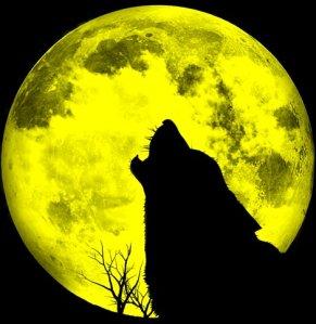 full-moon-moon-night-wolf-Favim.com-201089