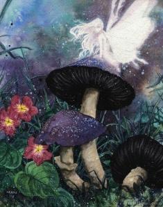 art-faerie-faery-fairy-Favim.com-894549