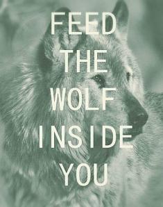 Wolf In Sheeps Clothing… Animal-grunge-hipster-inside-favim-com-1697492