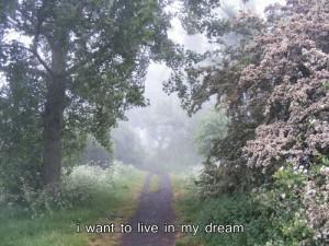 dream-dreams-grunge-live-Favim.com-2044348